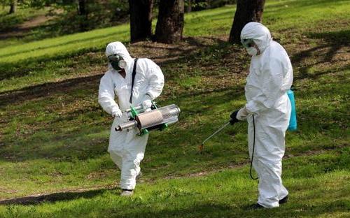 Профессиональная обработка участка от клещей и комаров